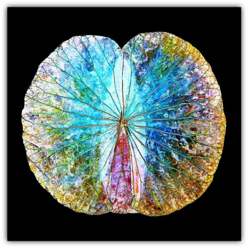 Lotusblatt alu mirror angel2 70x70 lotus wall art for Miroir 70x70