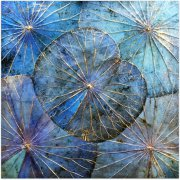 Lotuspanel (48x48) Blue1