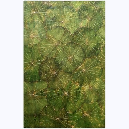 Lotuspond  Panel (80x120cm) G2 Green