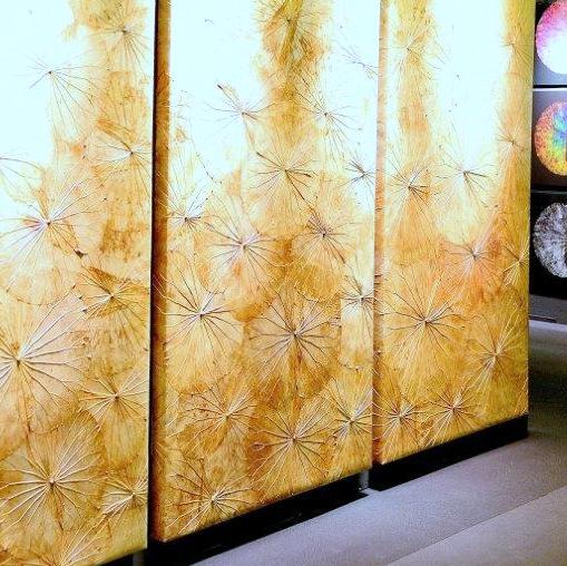 wandobjekte aus lotusblättern