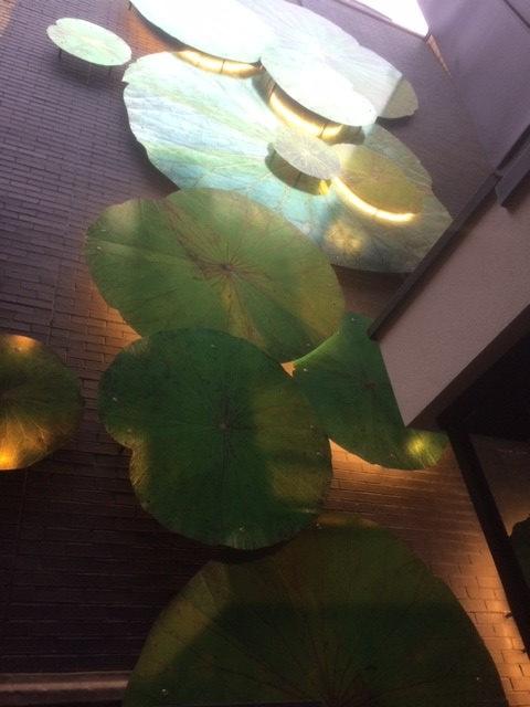 wandbild schwarz lotus 3D